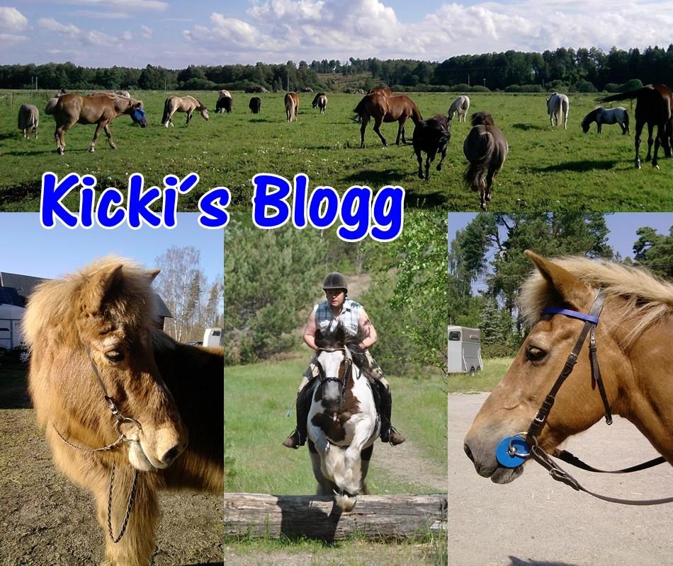 Kickis Blogg